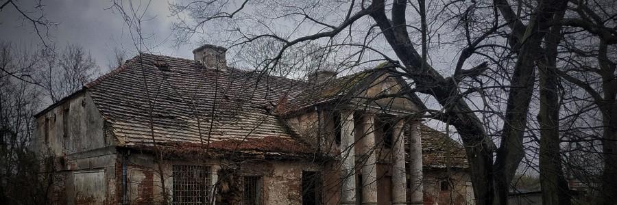 Fotografia przedstawia zrujnowany dworek szlachecki, widziany nieco z bocznej perspektywy. Budynek jest jednopiętrowy, murowany, pokryty dachówką, z portykiem wspartym na czterech kolumnach. Na pierwszym planie, przed budynkiem znajdują się wysokie, nie pokryte liśćmi drzewa oraz kika pszczelich uli.